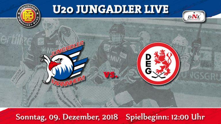 DNL: Letztes Punktspiel im Jahr 2018. Die Düsseldorfer EG kommt nach Mannheim