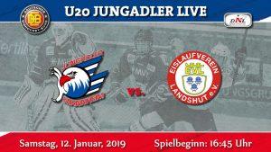 DNL: Spitzenspiel in Mannheim. Der EV Landshut ist zu Gast