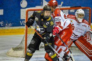 DNL- Spiele vor großer Kulisse gegen die Kölner Junghaie