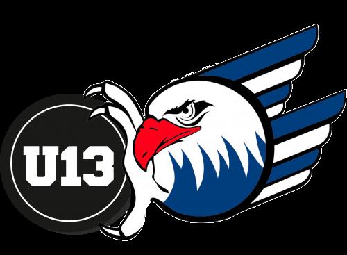 Logo-Adler_u13