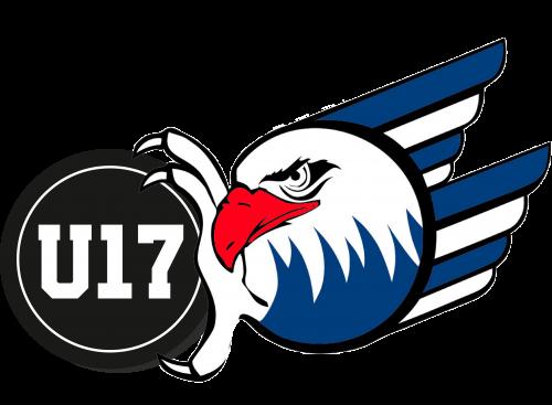 Logo Adler_u17